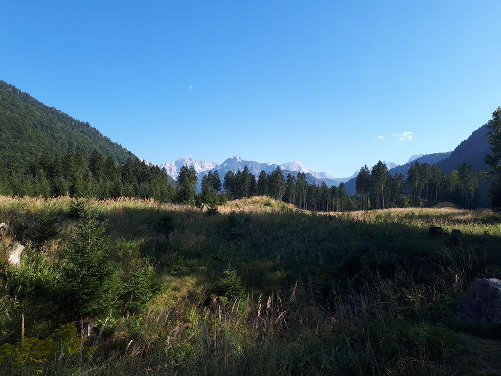 Das Tote Gebirge vom Wildpark Grünau aus gesehen