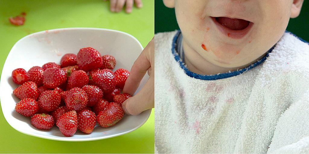 Erdbeeren Lebensmittel für BLW