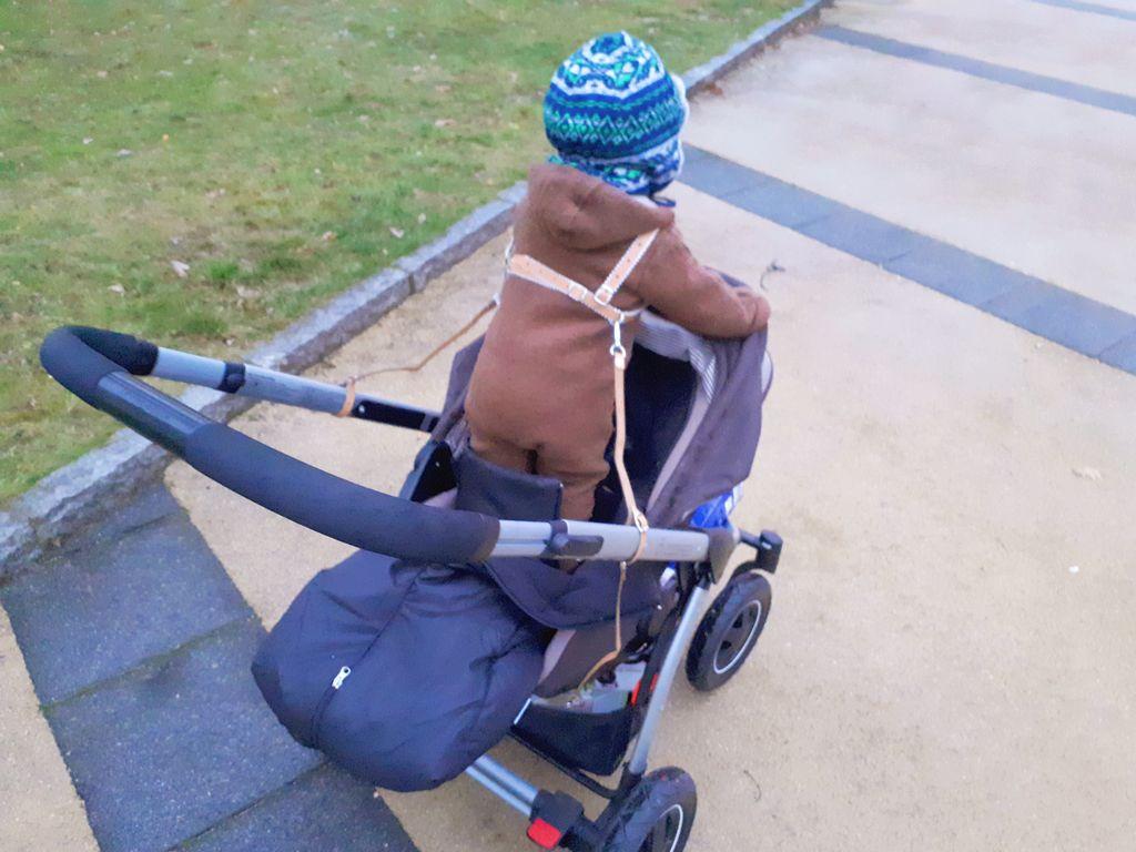 Stehen im Kinderwagen Papablog