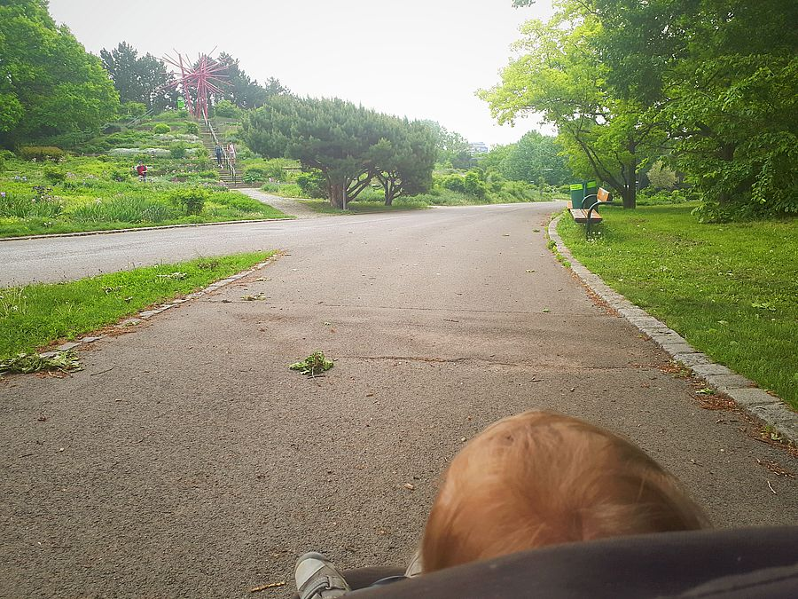 Spaziergang im Kurpark Oberlaa Wien