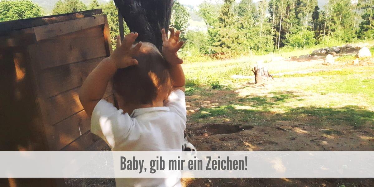 Babyzeichen Babygebärdensprache Zwergensprache
